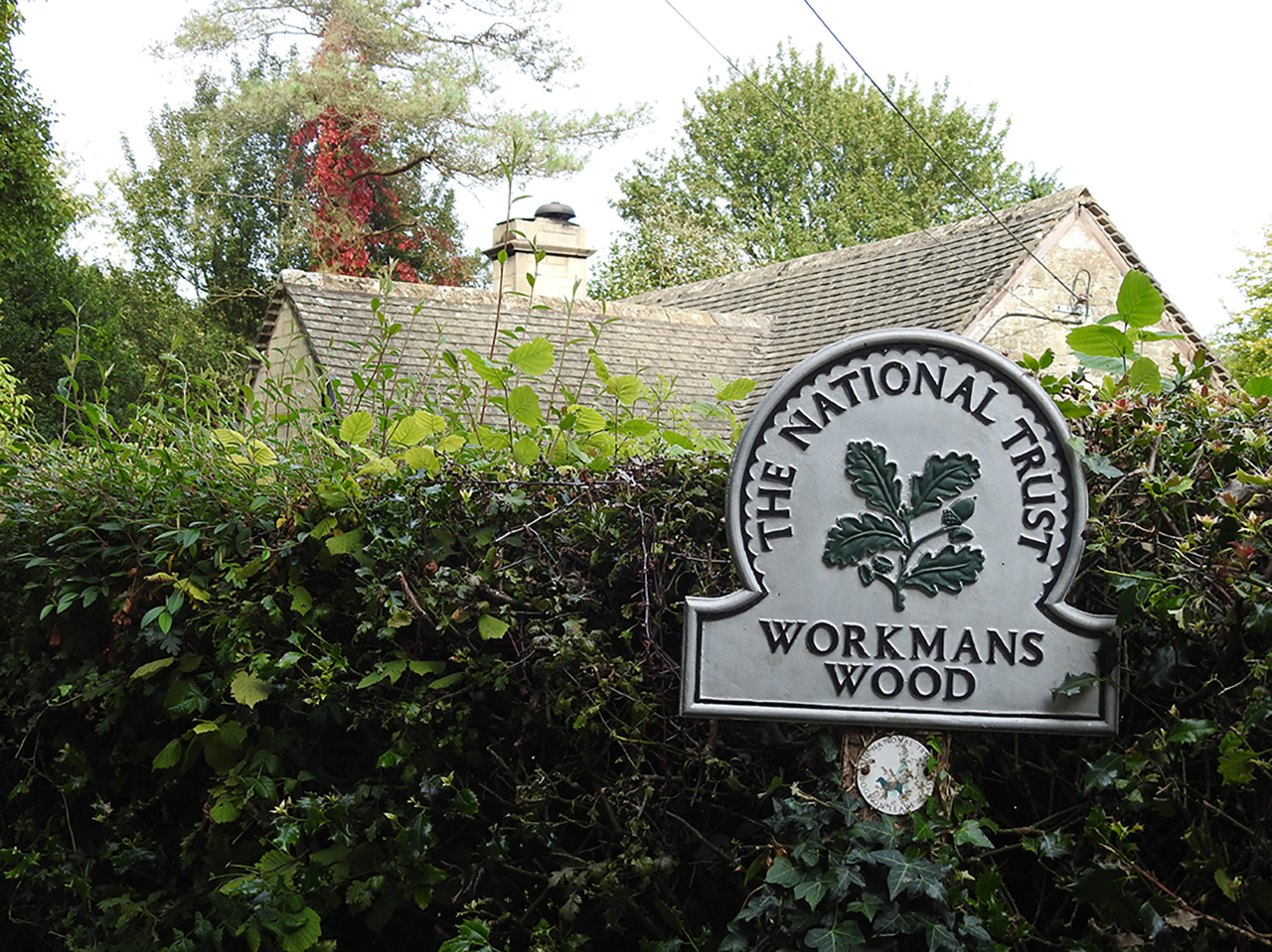 National Trust sign at entrance to Workmans Woods
