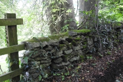 Old Cotswold stone wall